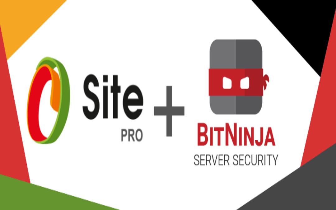 An Inside Look at Website Builders: Meet Site.pro CEO – Filip Borcov