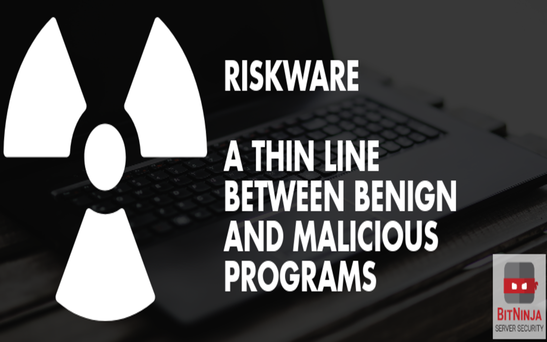 Riskware – a thin line between benign and malicious programs