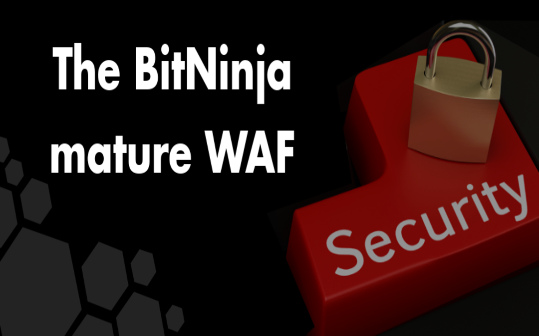 The BitNinja mature WAF module