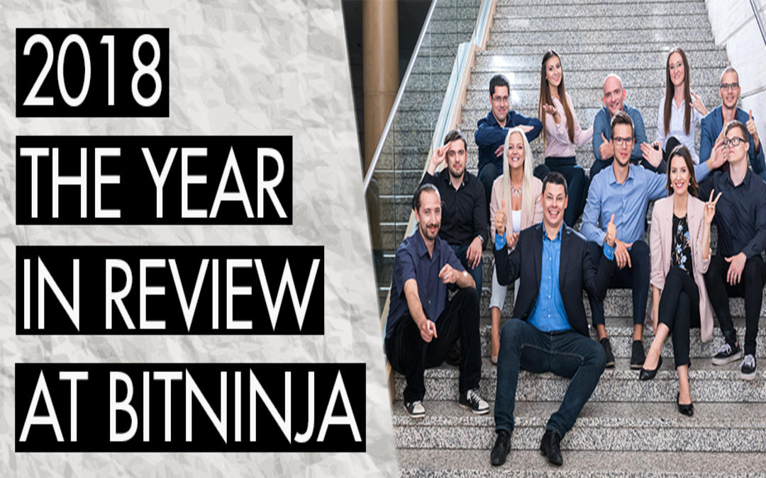2018: The Year in Review at BitNinja