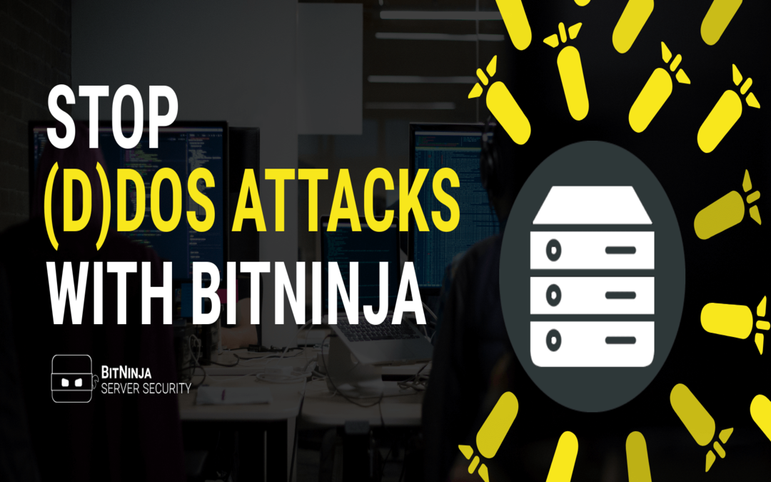 (D)DoS attack – How does it work and how will BitNinja stop it?
