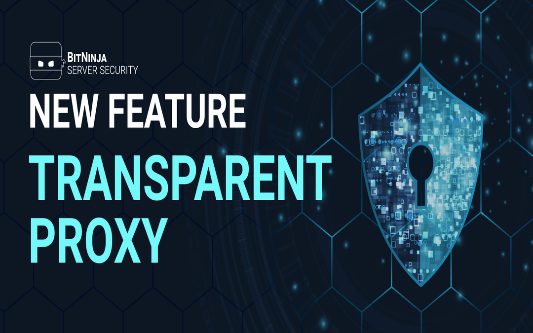 NEW Feature – Transparent Proxy for BitNinja WAF 2.0